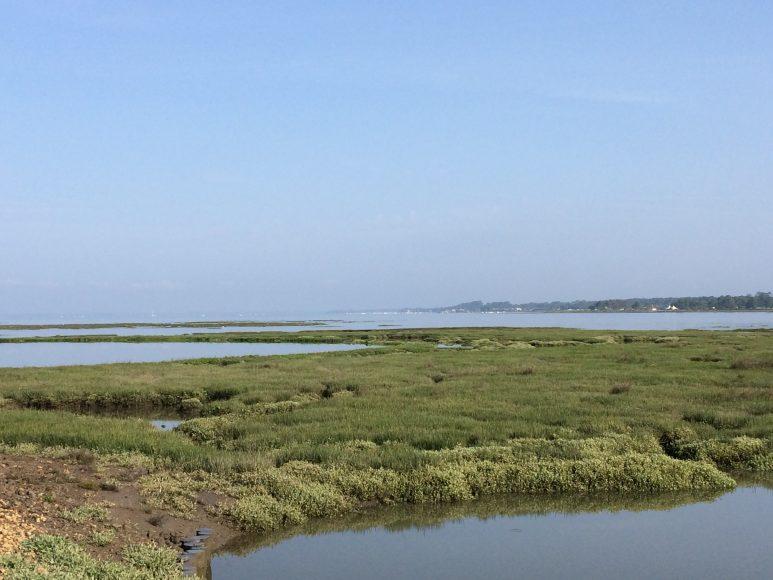 Samedi 27 mai : randonnée pédestre dans le bassin d'Arcachon